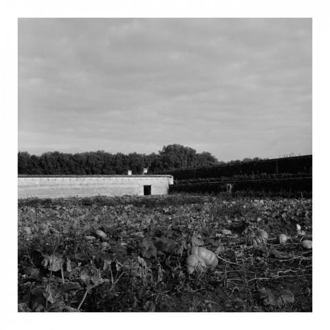 110-03-Le Potager du Roi, vue 3