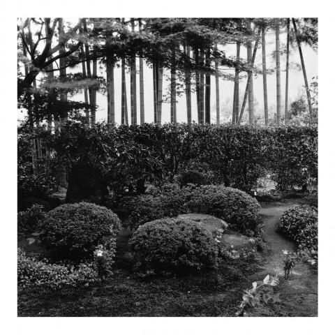 Hosen-in (Ohara)Kyoto2000