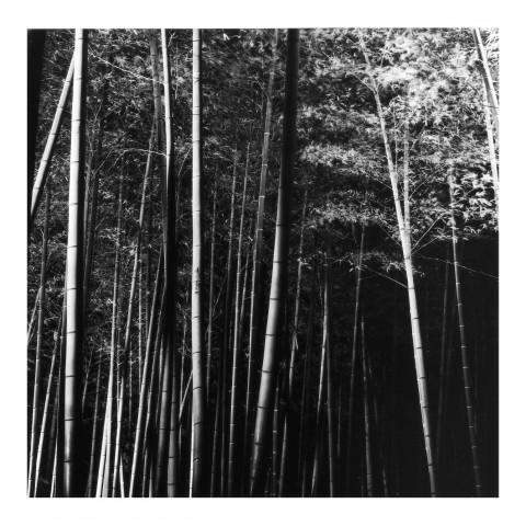 Kodai-ji vue2, Kyoto 2000