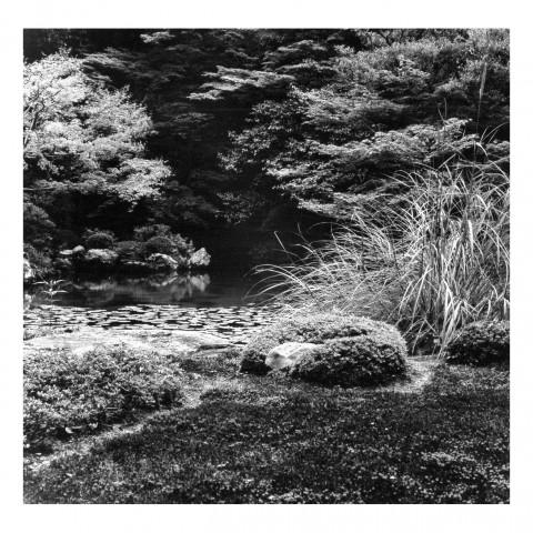 Nanzen-in vue7. Kyoto 2000