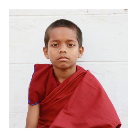 280-Été indien-Pupilles-416A1696